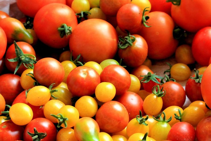 food-fresh-tomatoes-162830